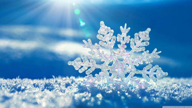 حقایق جالب درباره دانه های برف زمستانی