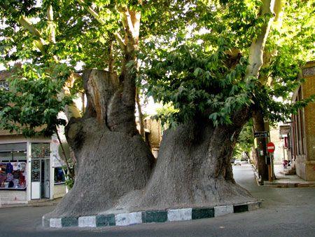 محلات یکی از قدیمی ترین شهرهای ایران