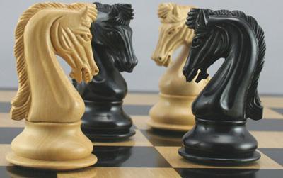 تست هوش فهمیدن حرکت اسب ها در شطرنج