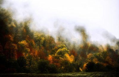 عکس پاییز رویایی در مازندران شهر همیشه زیبا