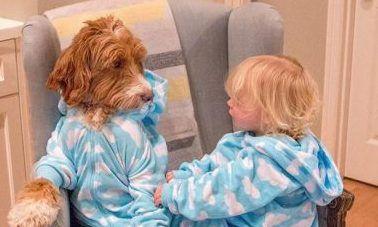 رابطه دوستی عمیق و دیدنی بین کودک و سگش