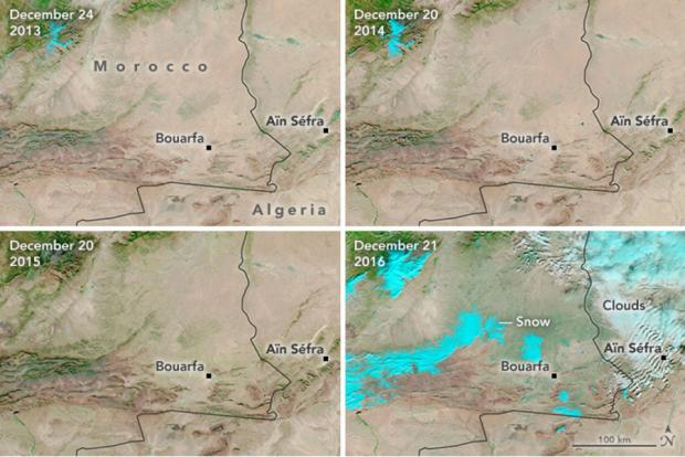 تصاویر دیدنی بارش برف در خشک ترین بیابان جهان