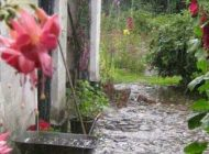 شعر گیلانی زیبا با حال و هوای بارانی