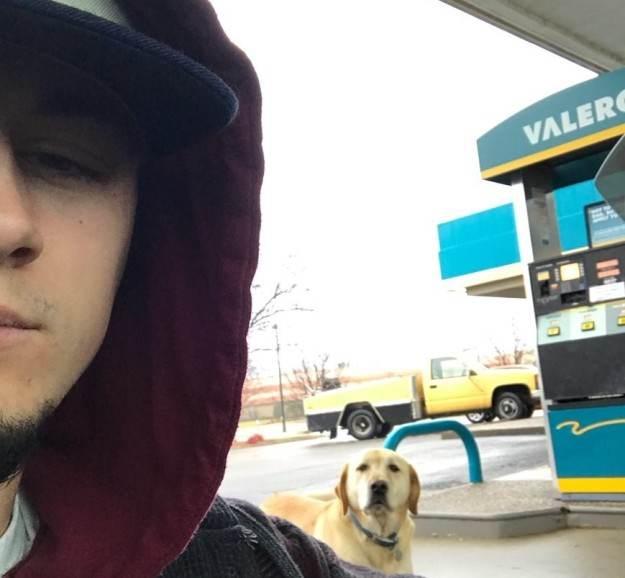 سگی که همیشه به دنبال پیدا کردن دوست است