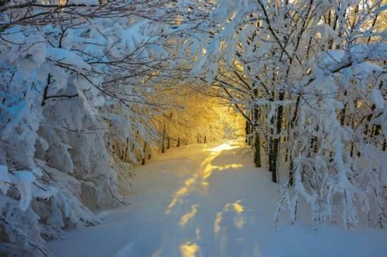 عکس های فصل زمستانی