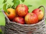 سیب بدن افراد سیگاری را پاکسازی می کند