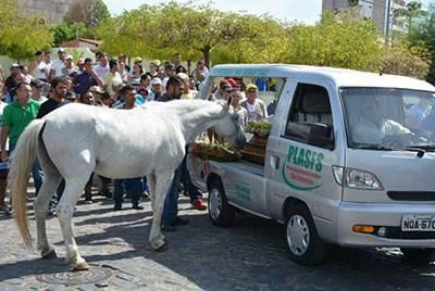ادای احترام اسب به صاحبش در روز خاکسپاری