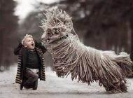 عکس های بسیار دیدنی از بازی کودک و سگ زیبایش