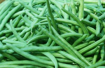 انواع ویتامین ها و کالری را در لوبیا سبز بیابید