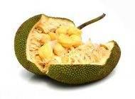 جک فروت میوه گرمسیری سرشار از پروتئین