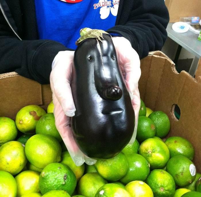 وقتی میوه ها به اشکال عجیب و غریب در می آیند