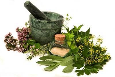 این گیاهان دارویی شما را با نشاط و شاد می کنند