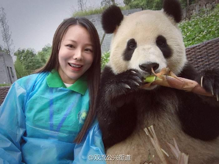 پاندای چینی عکاس سلفی های معروف دنیا