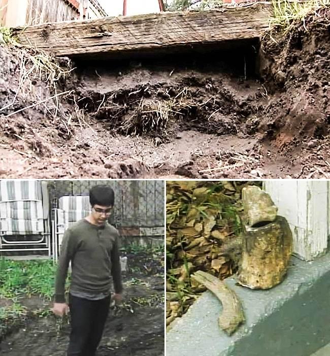 گنج های با ارزشی که در حیاط خانه ها کشف شده اند