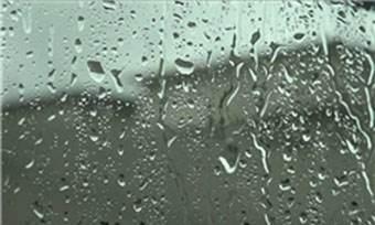 دلیل بوی خوب پس از بارش باران چیست؟