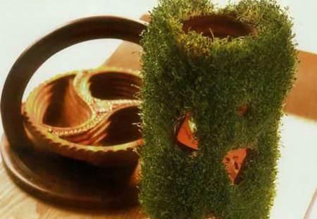 روش کاشت انواع سبزه برای عید نوروز 1396