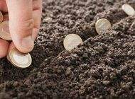 روش های آسان و اولیه برای بدست آوردن ثروت