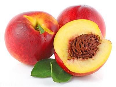 همه خواص مفید میوه شلیل را بشناسید