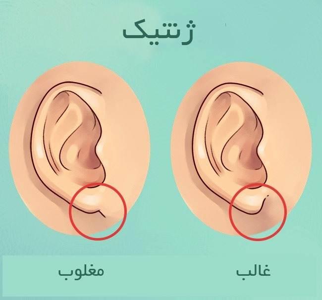 نشانه های سلامت بدن را در گوش ها مشاهده کنید