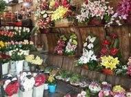 آشنایی با شغل گل فروشی با عشق و طراوت
