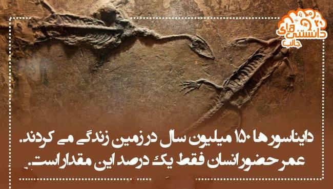 دانستنی های جالب و خواندنی تصویری 1396