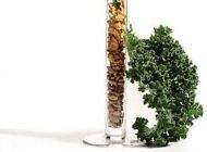 لزوم دریافت آهن کافی در رژیم گیاه خواری