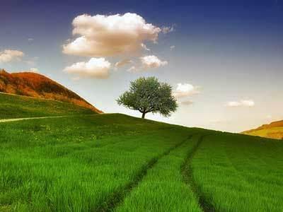 معرفی راه هایی برای شاد بودن در زندگی