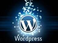 آموزش نصب وردپرس ( wordpress ) روی هاست