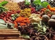 معرفی گیاهان دارویی برای کاهش چربی ها