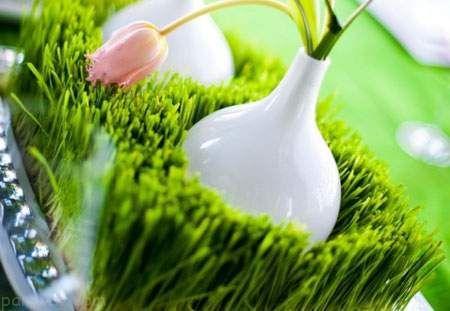 سبزه سفره هفت سین را با سلیقه درست کنید