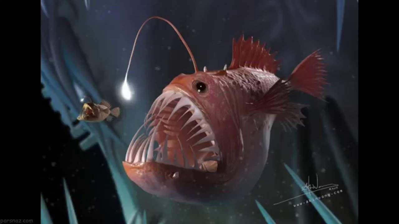 وحشتناک ترین موجودات اقیانوس ها را بشناسید