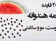 خاصیت های مفید تخم هندوانه برای سلامتی