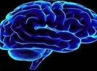 50 دانستنی جالب و عجیب درباره مغز انسان