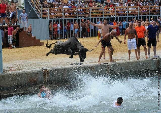 فستیوال مرگبار گاوبازی در آب مردم اسپانیا