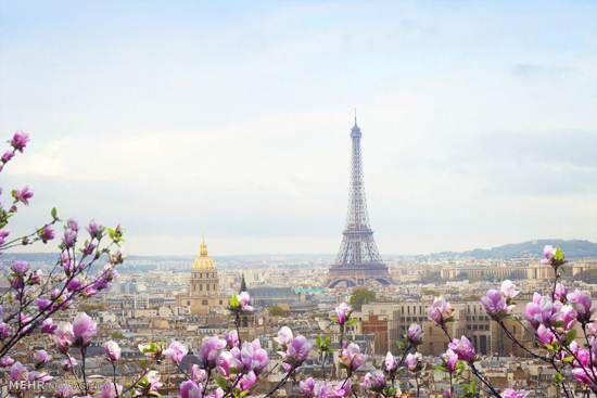 ع هایی از زیبایی های بهار در سراسر جهان