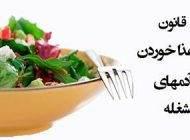 معرفی اصول غذا خوردن برای افراد پرمشغله