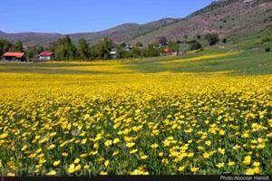 سفر به طبیعت زیبا و دیدنی رودبار در گیلان