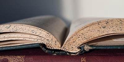 معرفی کتاب های خواندنی مناسب افراد درون گرا