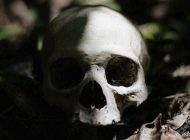 راز جمجمه دفن شده در حیاط زوج ساکن در شهریار