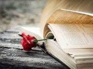 معرفی بهترین کتاب ها برای بالا بردن سطح آگاهی