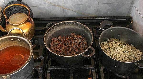 غذا درست کردن با جیرجیرک در کرمان +عکس