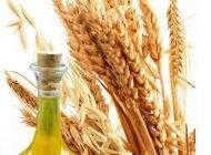 خواص روغن جوانه گندم برای سلامت موها