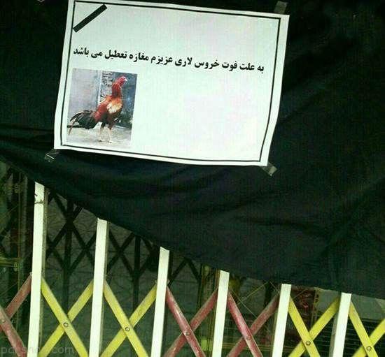 عکس های سوژه و خنده دار ایرانی و خارجی (207)