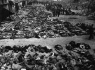 بدترین قتل عام های تاریخ بشر را بشناسید