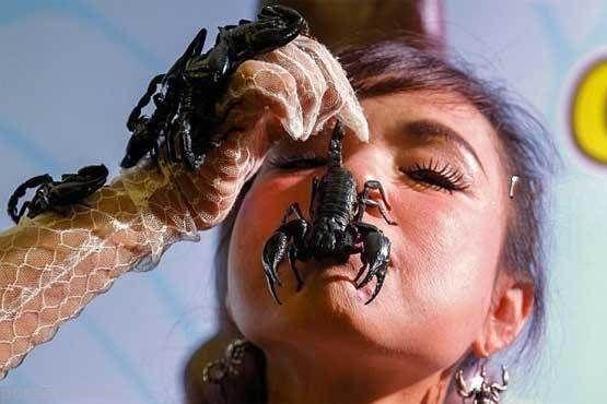 کار دلهره آور دختر تایلندی با عقرب ها +عکس