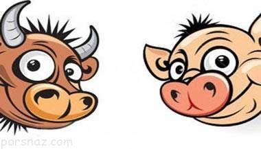 داستان جالب و خواندنی خوک و