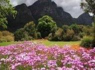شگفت انگیزترین باغ های جهان را بشناسید