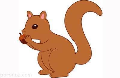 داستان کودکانه و زیبای سنجاب کوچولو