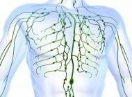 روش های مفید برای بهبود و تقویت سلامتی بدن