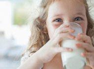 تخم شربتی بهترین جایگزین برای کلسیم شیر